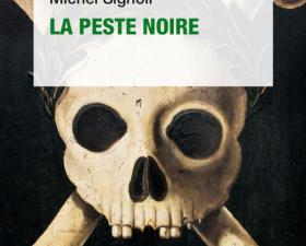 Les sociétés face aux épidémies - France Culture